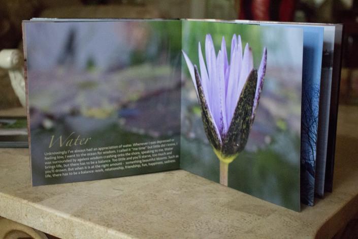 Darce's Photobook